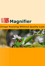 AKVIS Magnifier Business